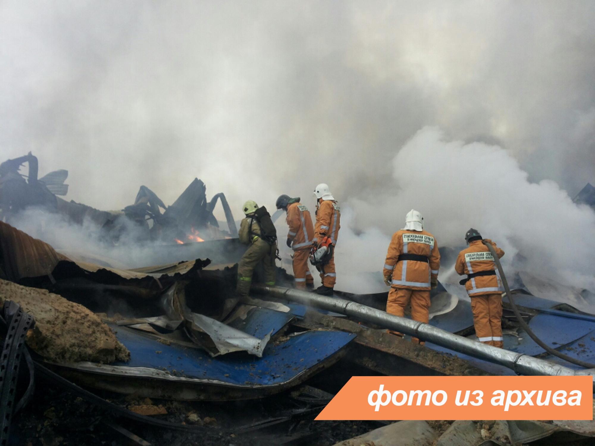 Пожарно-спасательные подразделения ликвидировали пожар в Гатчинском районе.