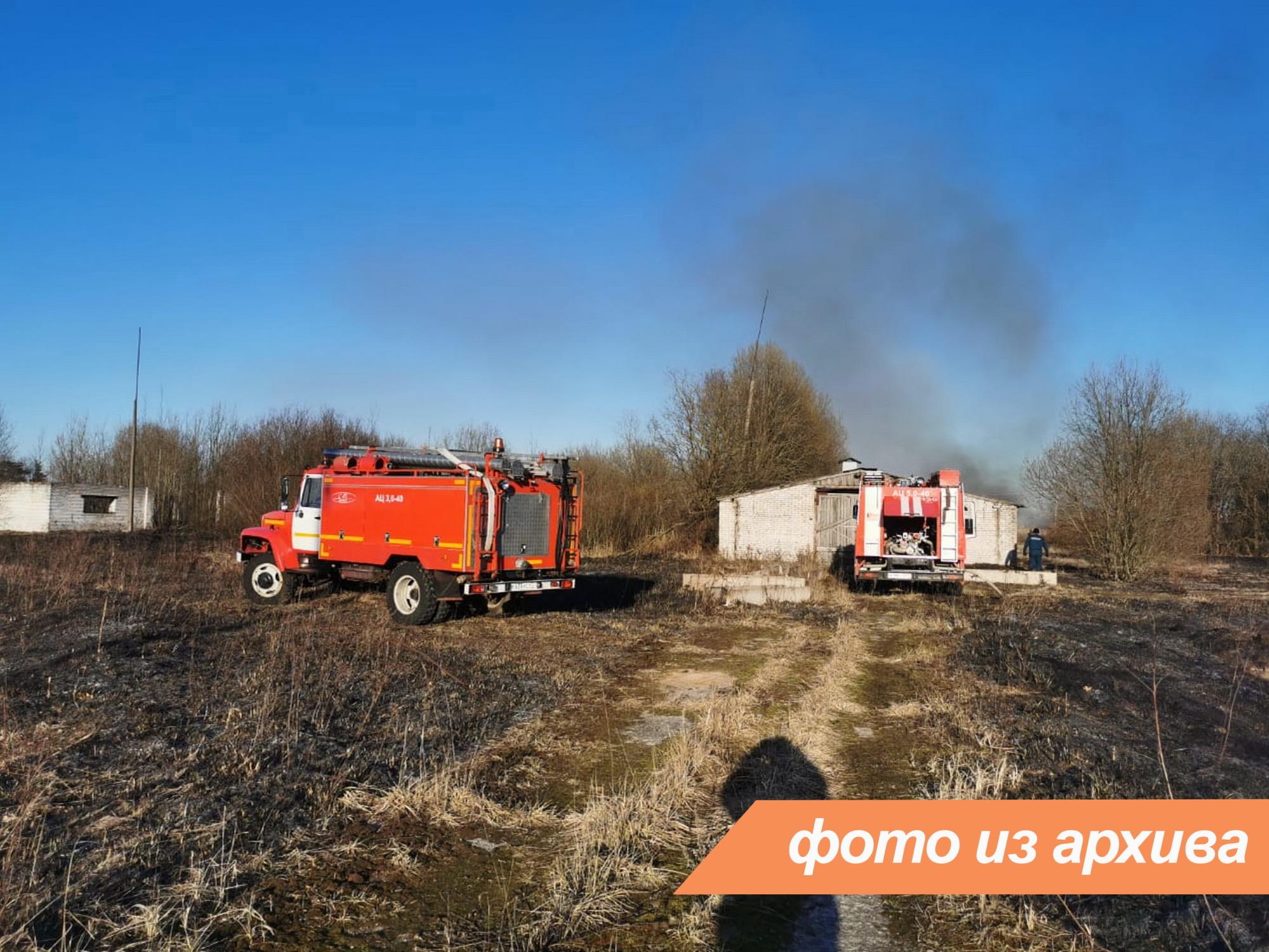 Пожарно-спасательные подразделения Ленинградской области ликвидируют пожар в Волосовском районе